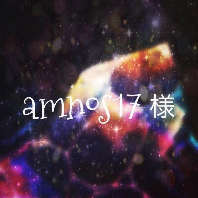 amnos17様予約品