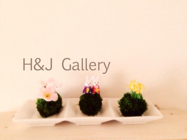 ○小さな苔玉トリオ ひな祭り