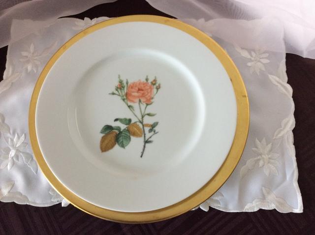 ボタニカールアートのバラのディナー皿
