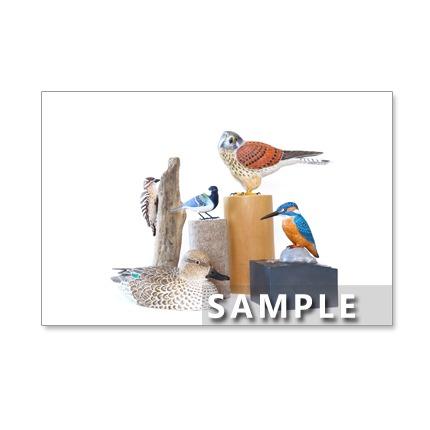 141)Postcard 5枚組 鳥の世界 バードカービング