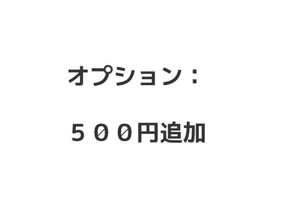 追加料金ページ: 500円