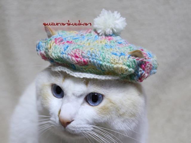 【猫用】キャスケット帽<ポッピングソ...