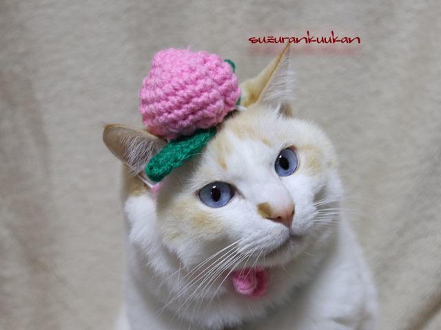 ミニ乗っけ編みもも