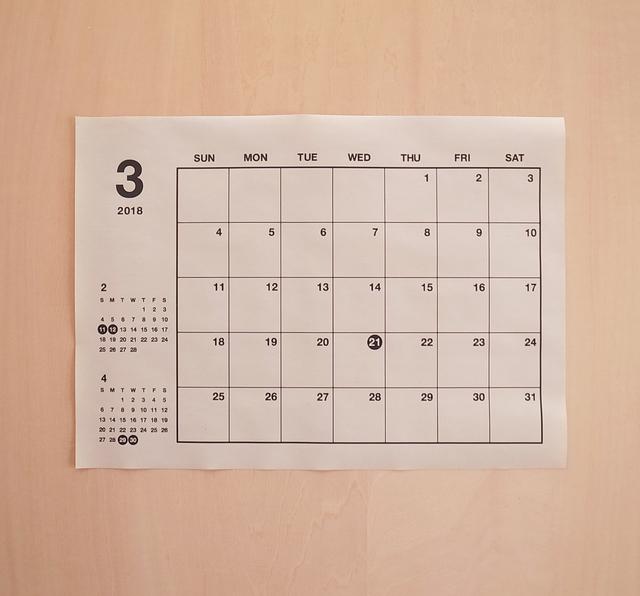 再販 シンプル ベーシック b5 a4 カレンダー モノトーン