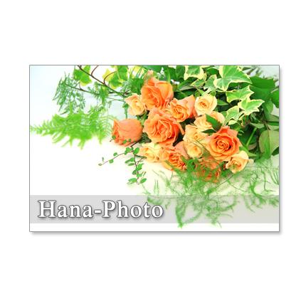 ★1154)いろいろな花、いろいろな色のブーケたち  ポストカード5枚組 再販1