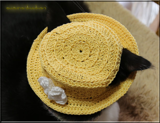 【猫用】編みカンカン帽 フチ浅 花付き