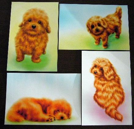 オリジナルイラスト☆トイプードルのポストカード4枚組