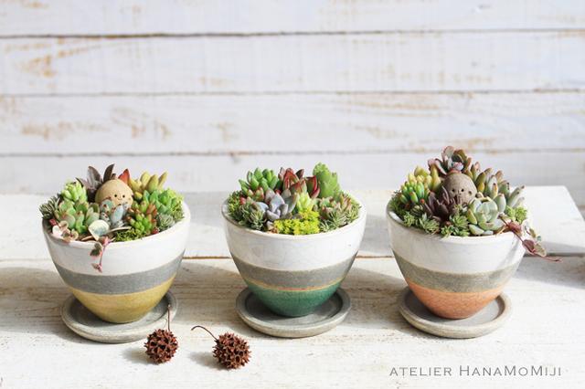 しましま陶器の多肉植物寄せ植え【しましまピンク】