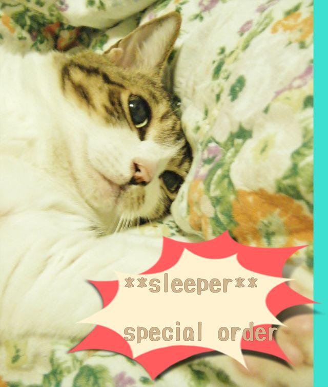 **sleeper S/O**  Aさまオーダー品