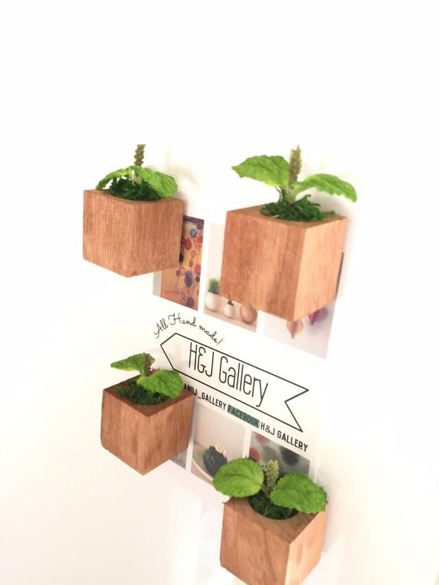 ☆小さな植木鉢マグネット3個セット*ミント