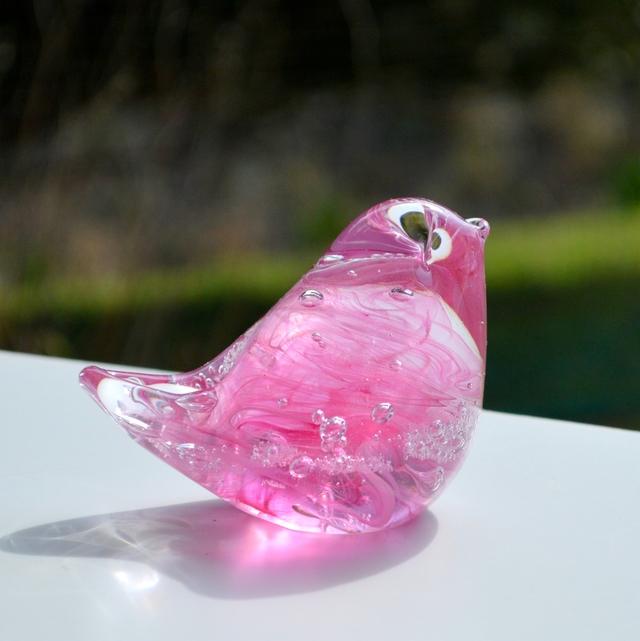 ピンク×ピンクの小鳥 b