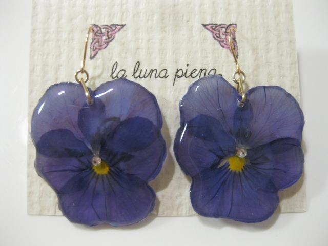 Violaピアス deep purple