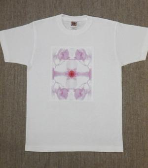 レディースTシャツ・Mサイズ 『Pic 桜』