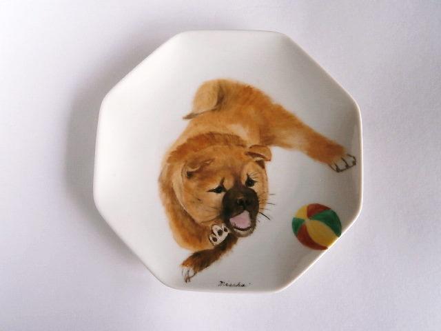 柴犬の絵皿