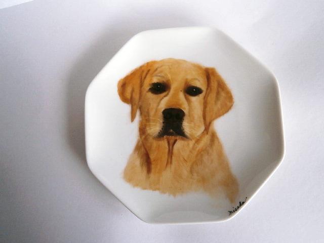 ラブラドール犬の絵皿