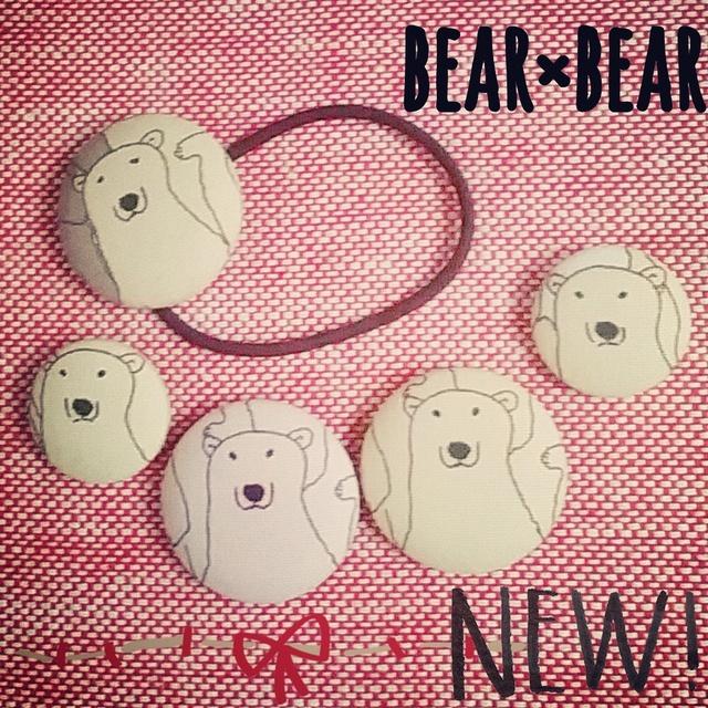 bear×bear