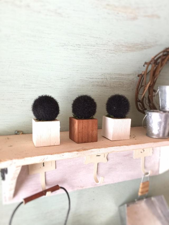 ☆小さな小さなちーさな植木鉢*ブラックトリオ