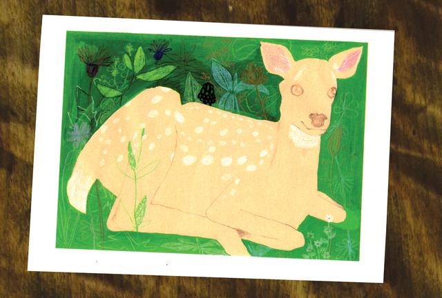 森の中 鹿 ポストカード(ポストカード2枚セット)018