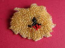 Jake's brooch