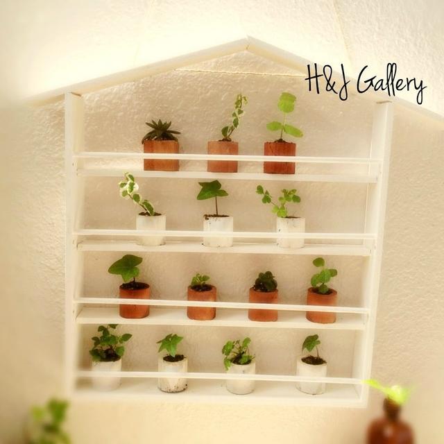 ☆小さな小さなちーさな植木鉢のアパート