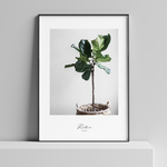 #040 interior poster : plant life