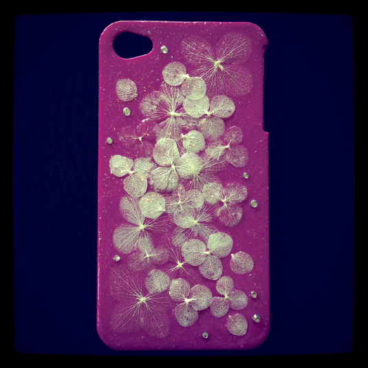 iPhone ������ �ѡ��ץ�  ��������