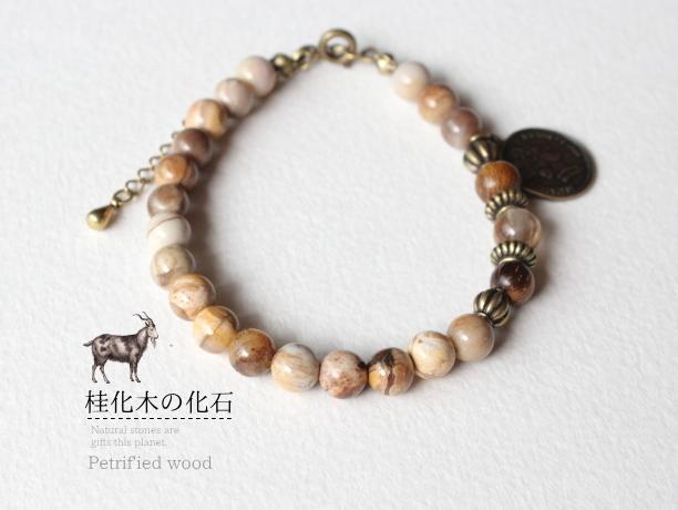 桂化木の化石/ペトリファイドウッド