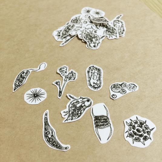 微生物のフレークシール