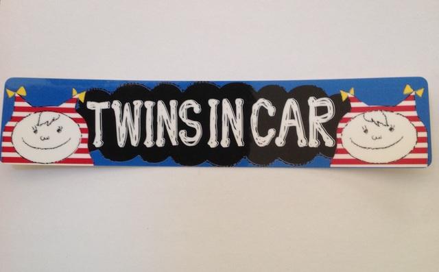 女の子 双子  TWINS IN CAR