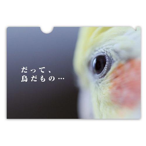 オザ兵長クリアファイル - だって、鳥だもの…