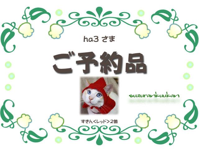 ha3 様 ご予約品【猫用】ずきん<レッド>2個セット
