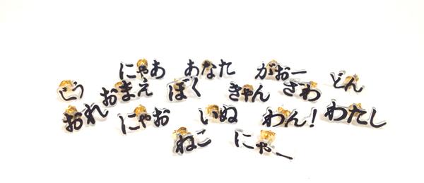 KATAMiMi 【完全オーダーメイド】オノマトペピアス(片耳)
