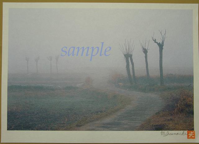 プリント朝霧と畔木シリーズ  道