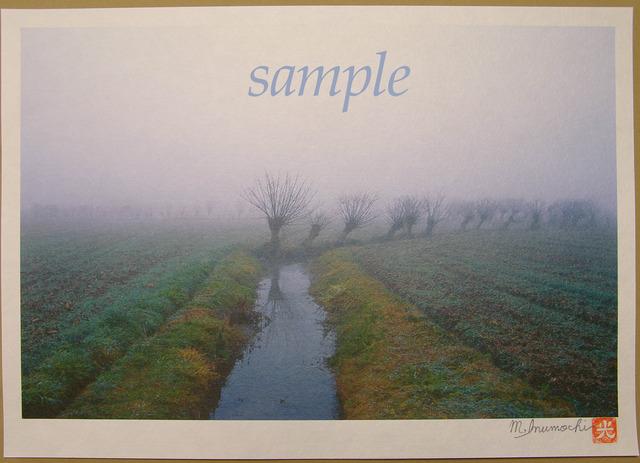 プリント朝霧と畔木シリーズ 水路