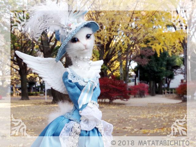 【CAT】天使猫
