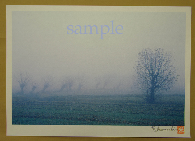 プリント朝霧と畔木シリーズ 一人
