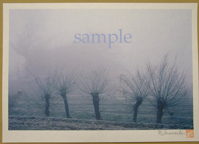 プリント朝霧と畔木シリーズ 初冬