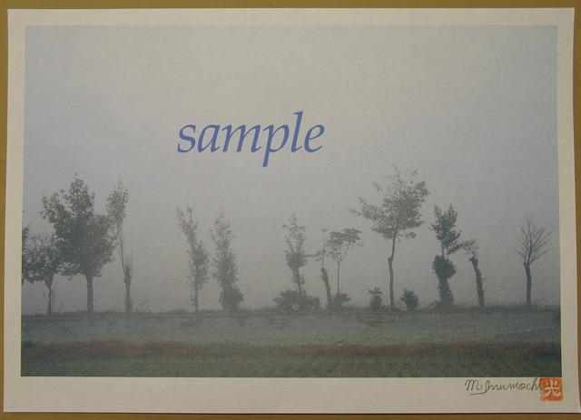 プリント朝霧と畔木シリーズ 十色