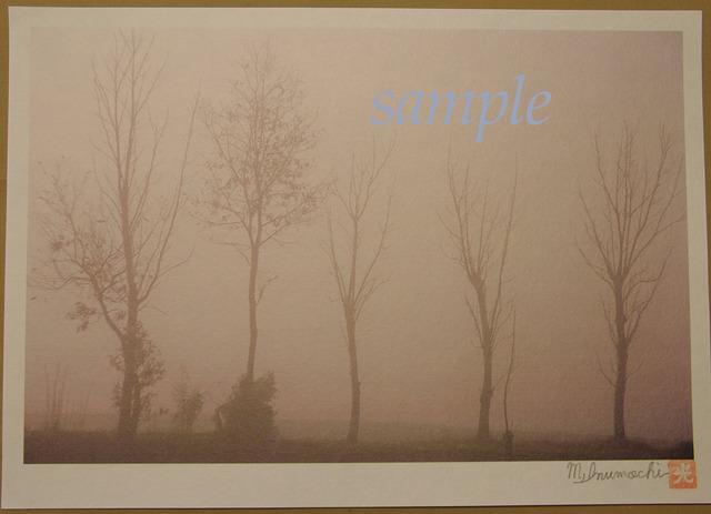プリント朝霧と畔木シリーズ 背高ノッポ