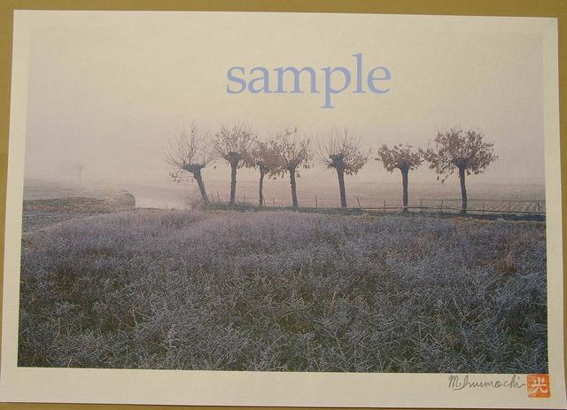 プリント朝霧と畔木シリーズ 霜降る