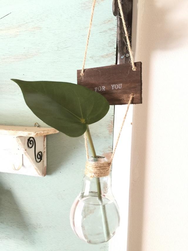 ?型の葉アンスリウム☆電球の吊り下げ花瓶
