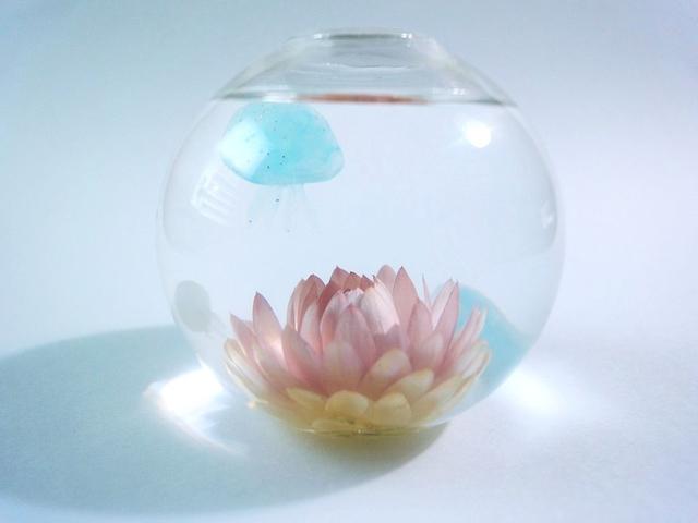 ぷちアクアリウム くらげちゃん★花とクラゲ ボール型 C80