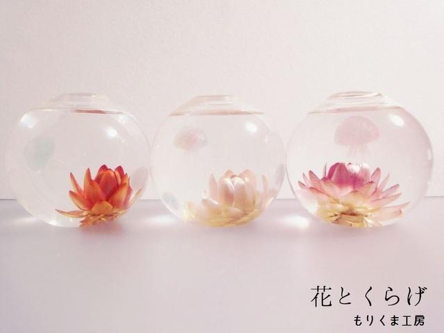 (再販)ぷちアクアリウム くらげちゃん★花とクラゲ ボール型