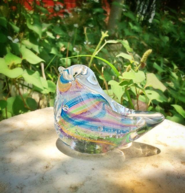 虹色の小鳥 t
