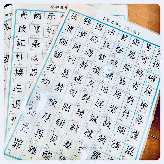 小学校5年生で習う漢字 185字 国語 教材