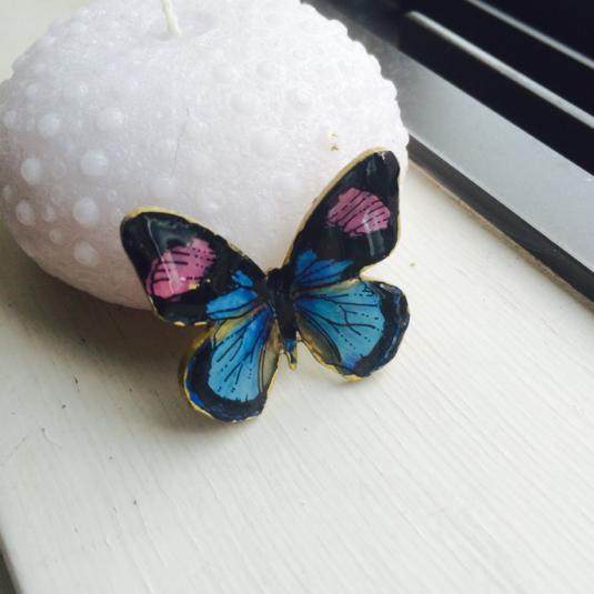 ベイツタテハ パーツ 蝶々