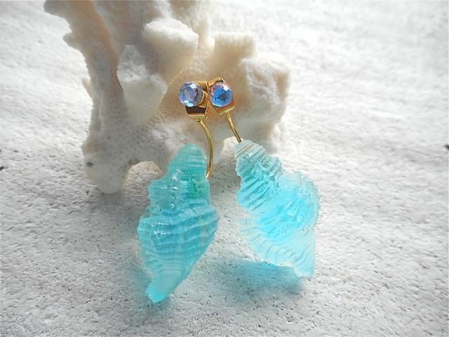 人魚の耳飾り  Chicoreus Ramosus