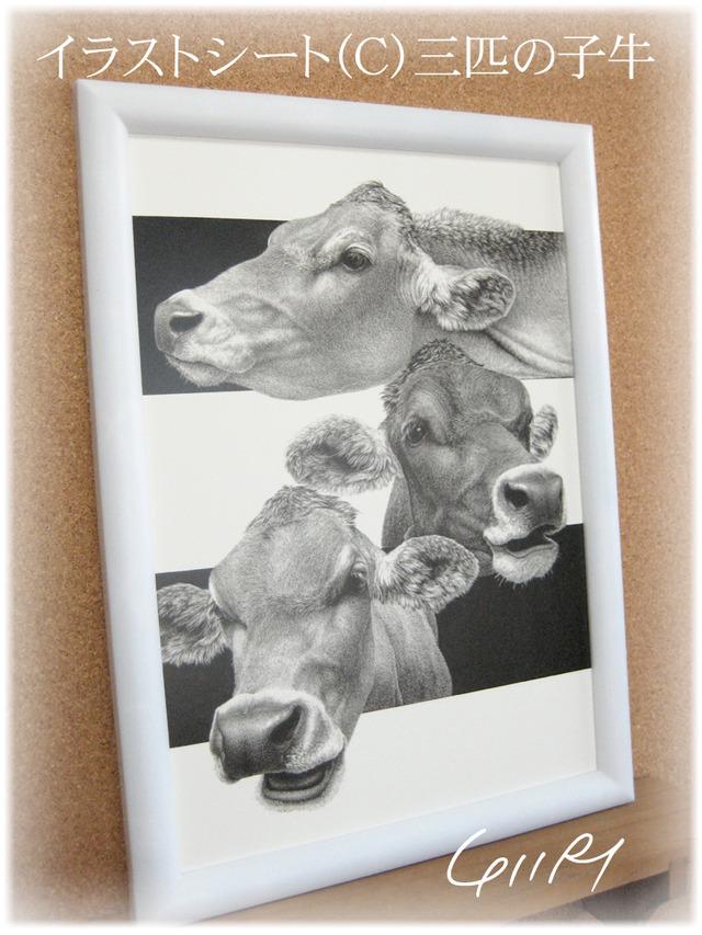 イラストシート(C)三匹の子牛