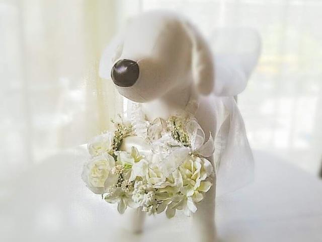 863ed556de56f  リングドッグリングピロー・ミニ 小型犬~中型犬 『White garden』 ブライダル フラワーアレンジメト 首輪 ☆ リングボーイ リングガールにも!  R-018
