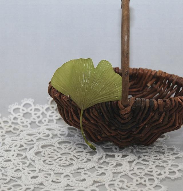 [��������]Autumn Leaf Ginkgo G��